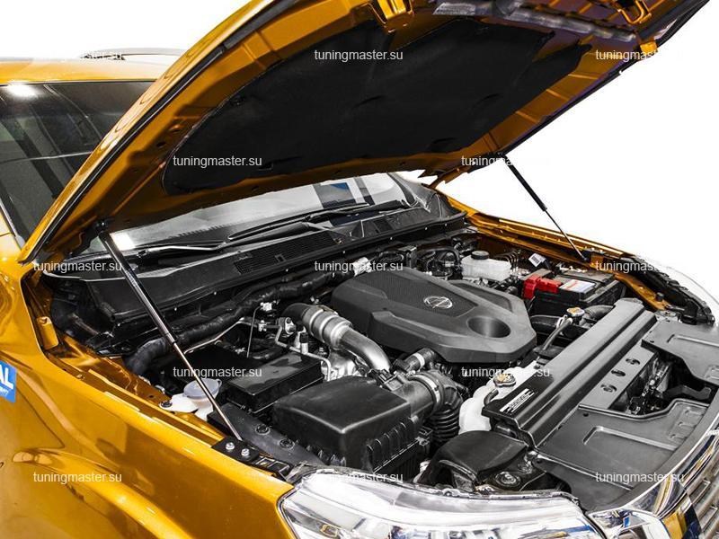 Амортизаторы капота для Nissan